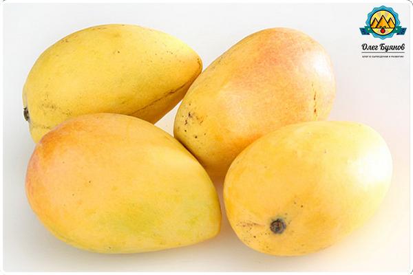 жёлтые плоды