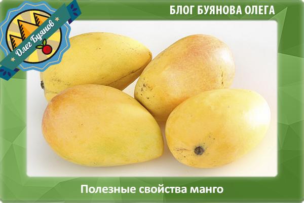 красивый манго