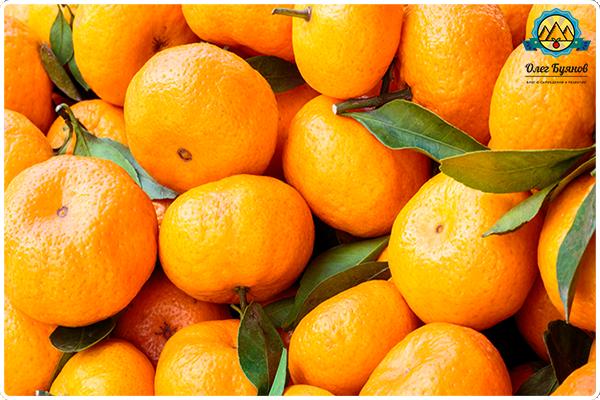 мандарины фрукты