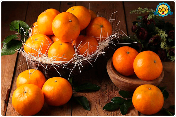 плоды мандаринов